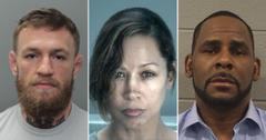 notable recent celebrity mugshots arrests hollywood pf